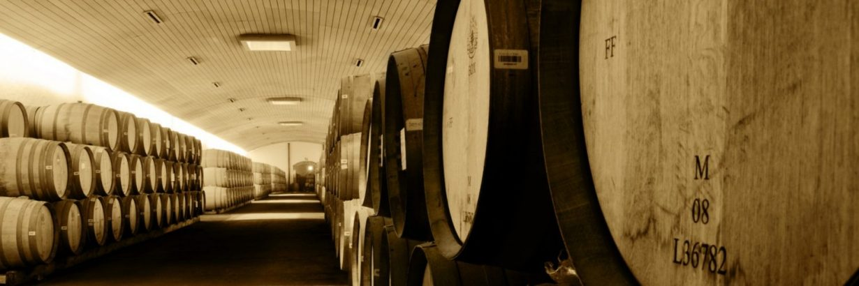 vineyard99